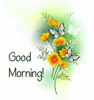 Good Morning Wishes with Flowers - Good Morning Wishes with Flowers