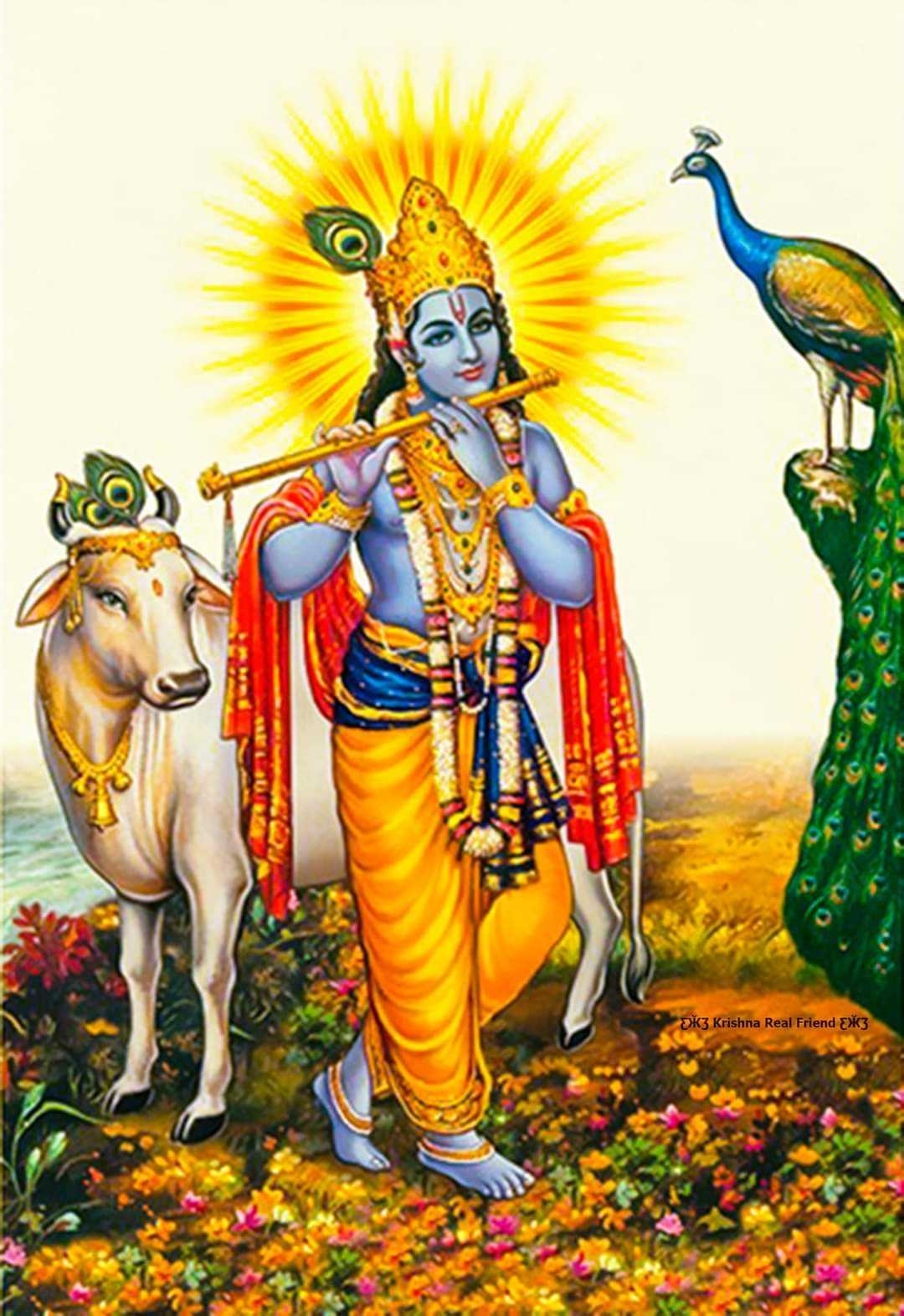 Krishna God Playing Flute - God krishna loves to play flute and he also love to spend time with cows. Krishna was always favorite to all gokulwasi.