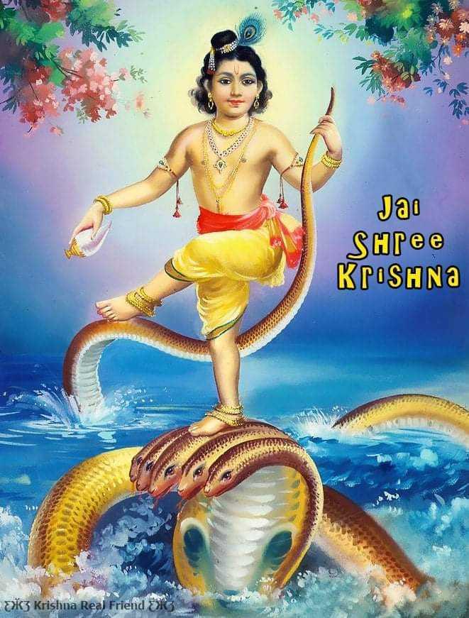 Lord Shree Krishna Bhagwan Bal Roop Wallpaper - God krishna bal roop hd wallpaper for krishna lovers. Krishna killing kaliya naag to protect people from deadly snake.