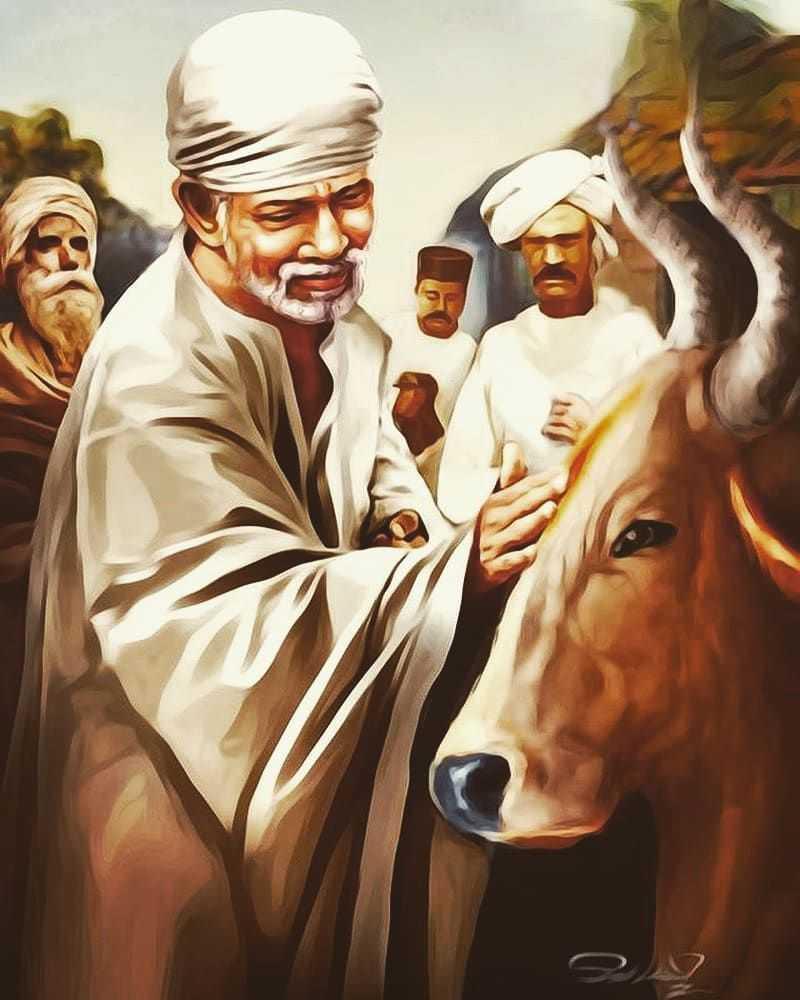 Cow Seva Karte Huye Sai Baba Ka Wallpaper - Spiritual god sai baba ka gay seva karte hue wallpaper photo image. sai baba wallpaper for desktop hd free download.