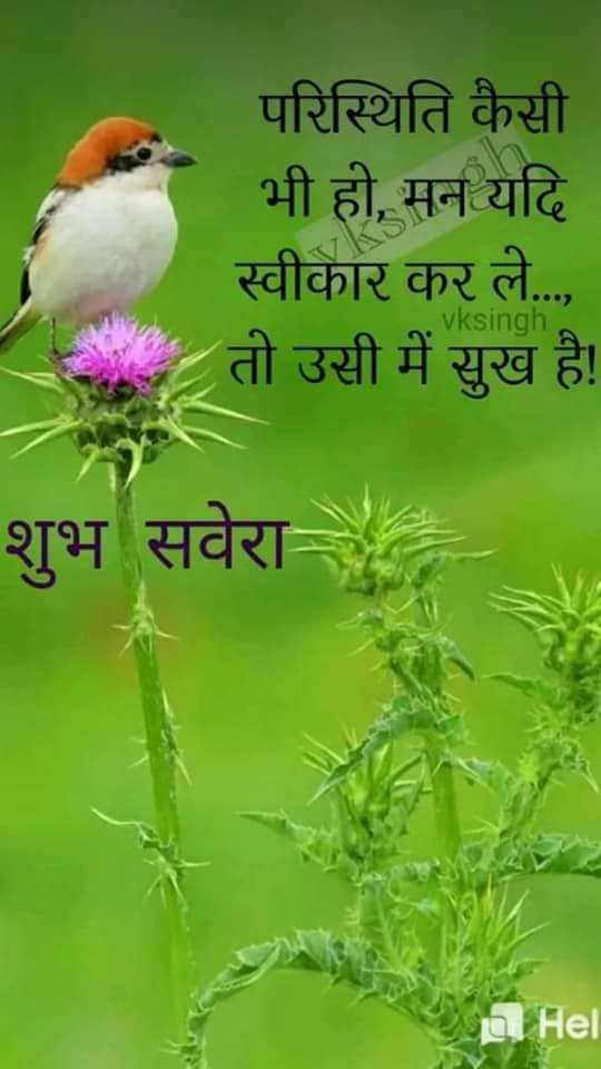 Good Morning Status for Life in Hindi - Good Morning Status for Life in Hindi